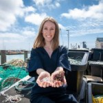 Scale of the problem: How fish skins and algae could help solve the plastic pollution crisis